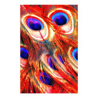 Papelaria Penas do pavão