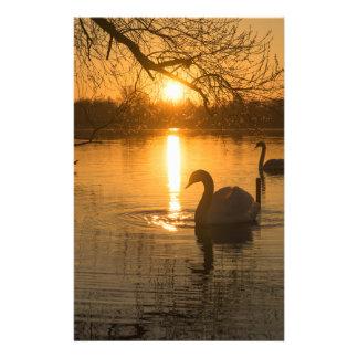 Papelaria Por do sol com cisne
