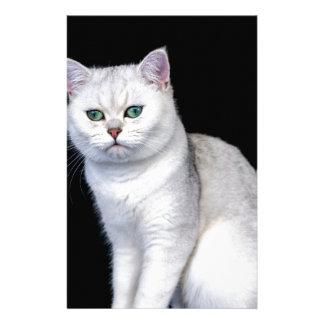 Papelaria Prata preta gato britânico protegido do cabelo