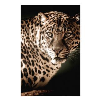 Papelaria Presentes do tigre