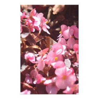 Papelaria produtos florais