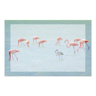 Papelaria Rebanho cinzento e cor-de-rosa dos flamingos no