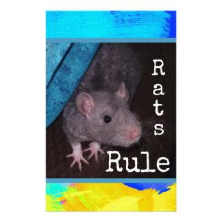 Papelaria Regra dos ratos (colorida)