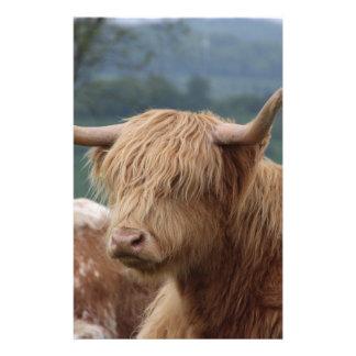 Papelaria retrato do gado das montanhas