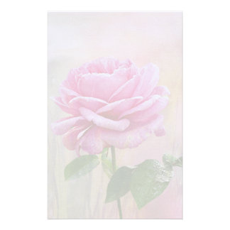 Papelaria Rosa do rosa