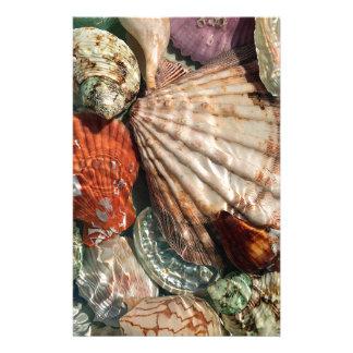Papelaria Seashells