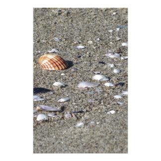 Papelaria Seashells na areia. Fundo da praia do verão