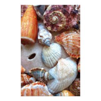 Papelaria Seashells pelo litoral