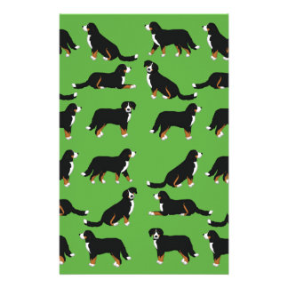 Papelaria Sennenhund de Berna selecção