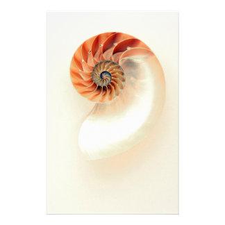 Papelaria Shell da vida
