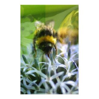Papelaria Sonhos da abelha