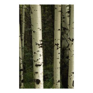 Papelaria Textura de um retrato da floresta