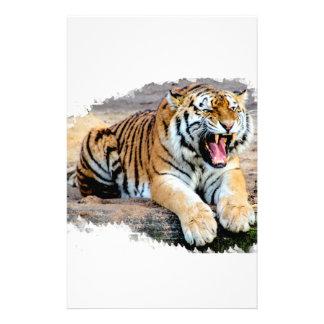 Papelaria Tigre