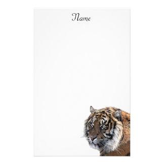 Papelaria Tigre de Bengal