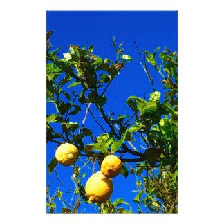 Papelaria Três limões sicilianos