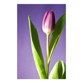 Papelaria Tulipa roxa no dia dos namorados brilhante do