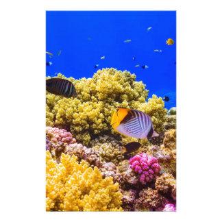 Papelaria Um recife de corais no Mar Vermelho perto de