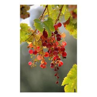 Papelaria Uvas vermelhas do close up entre as folhas