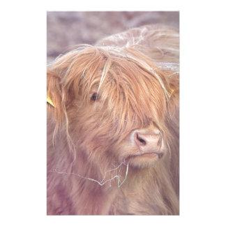 Papelaria Vaca das montanhas, gado das montanhas