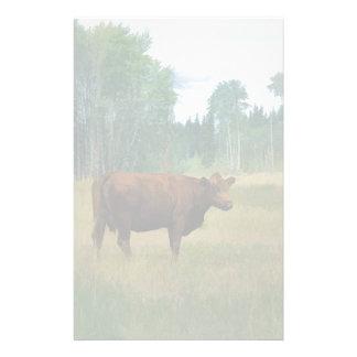 Papelaria Vaca de Brown em um cavalo e em um rancho de gado
