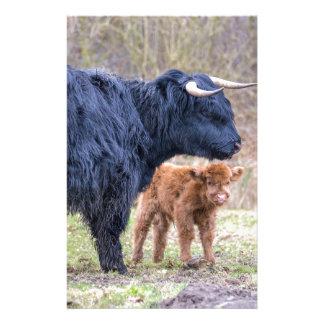 Papelaria Vaca escocesa preta da mãe do escocês com