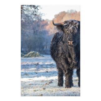 Papelaria Vaca escocesa preta do escocês na paisagem do