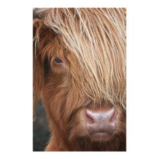 Papelaria Vacas escocesas das montanhas - Scotland