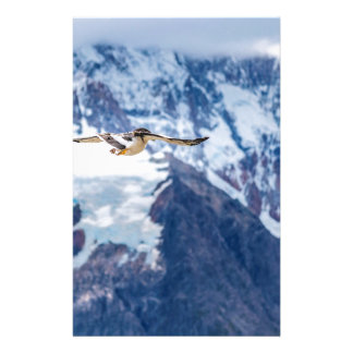 Papelaria Vôo Patagonian Austral do pássaro