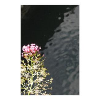 Papelaria Wildflowers contra a superfície da água de um rio