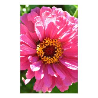 Papelaria Zinnia cor-de-rosa