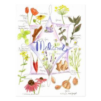 Papoila medicinal do alho do Echinacea da erva Cartão Postal