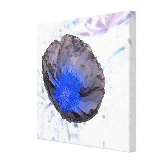 Papoila preta & azul do impressão das canvas -
