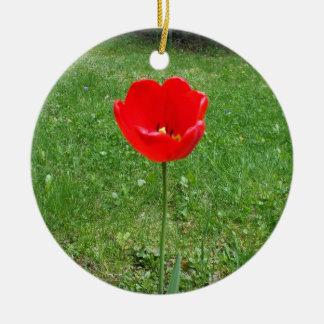 Papoila vermelha brilhante ornamento de cerâmica