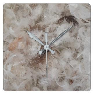 Para baixo fotografia das penas de pássaro do relógios para paredes