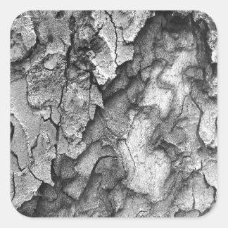 Para o amor da natureza - latido do preto & do adesivo quadrado
