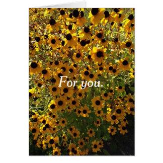 Para você Susan de olhos pretos floresce cartões