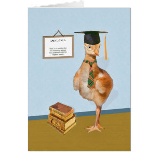 Parabéns, graduação, pássaro cómico cartão comemorativo