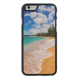 Paraíso tropical da praia, Havaí
