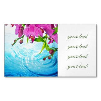 paraíso tropical, zen, paz, orquídea, água azul,