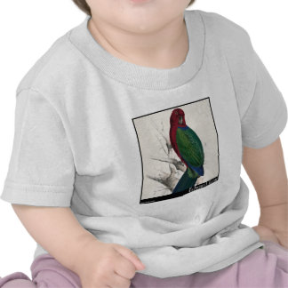 Parakeet do Tabuan de Edward Lear Camiseta