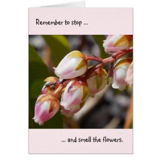Pare e cheire o cartão de nota das flores