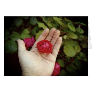 """Pare e cheire o cartão do padrão dos rosas (5"""" x"""