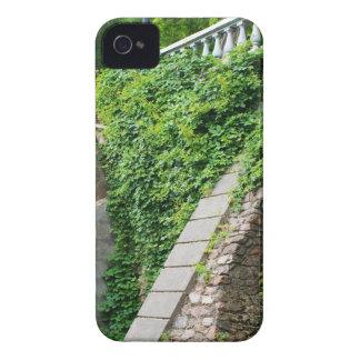 Parede de pedra velha com hera capas para iPhone 4 Case-Mate