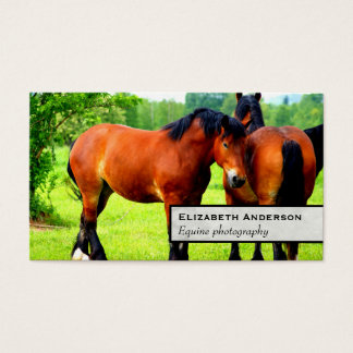 Pares de paisagem verde dos cavalos | do polonês cartão de visitas