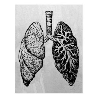 pares de pulmões cartão postal