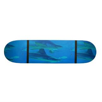 Pares de skate dos tubarões