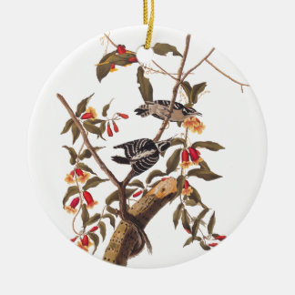 Pares Downy do pica-pau de Audubon Ornamento De Cerâmica Redondo