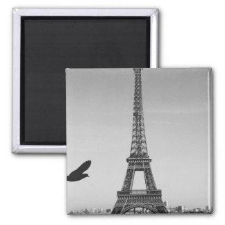 Paris Ímã Quadrado