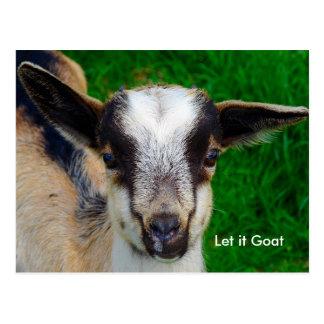 Paródia engraçada da cabra cartão postal