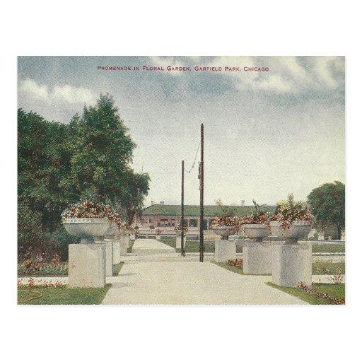 Parque Chicago Illinois de Garfield do vintage Cartões Postais